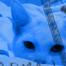 Thumbnail image for Sony PSP DeadMan Wallpaper